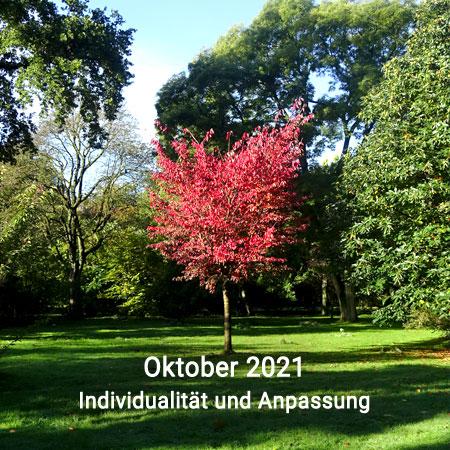 Monatsvorschau Astrologie Oktober 2021